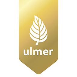 Eugen Ulmer